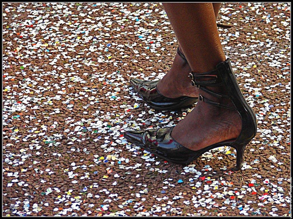 carnavalbelfort2008.jpg